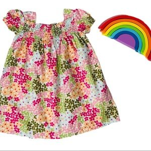 Gymboree Flounce Sleeve Floral Print Dress 18-24m